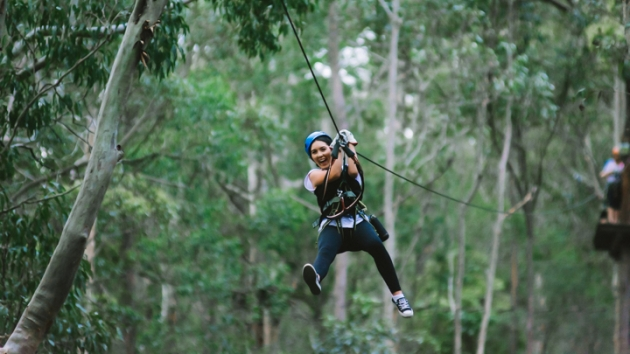 Zip-lining through the trees